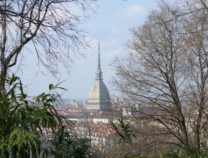 Annual Meeting and Conference – Turin 2015 (Italy)